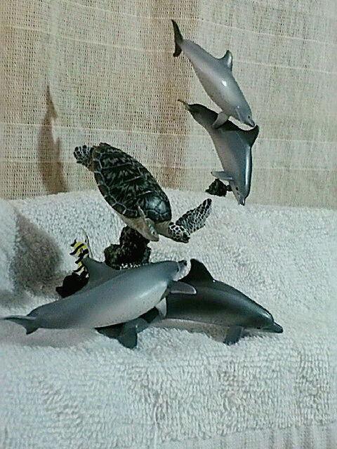 アオウミガメとミナミハンドウイルカ