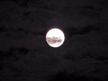 103雲と名月