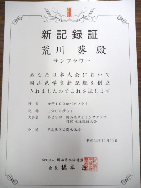 P1040004_convert_20121112123839.jpg