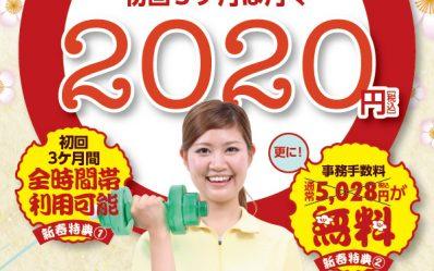 S_campaign-202001